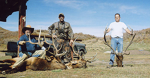 Southwest Colorado elk hunting